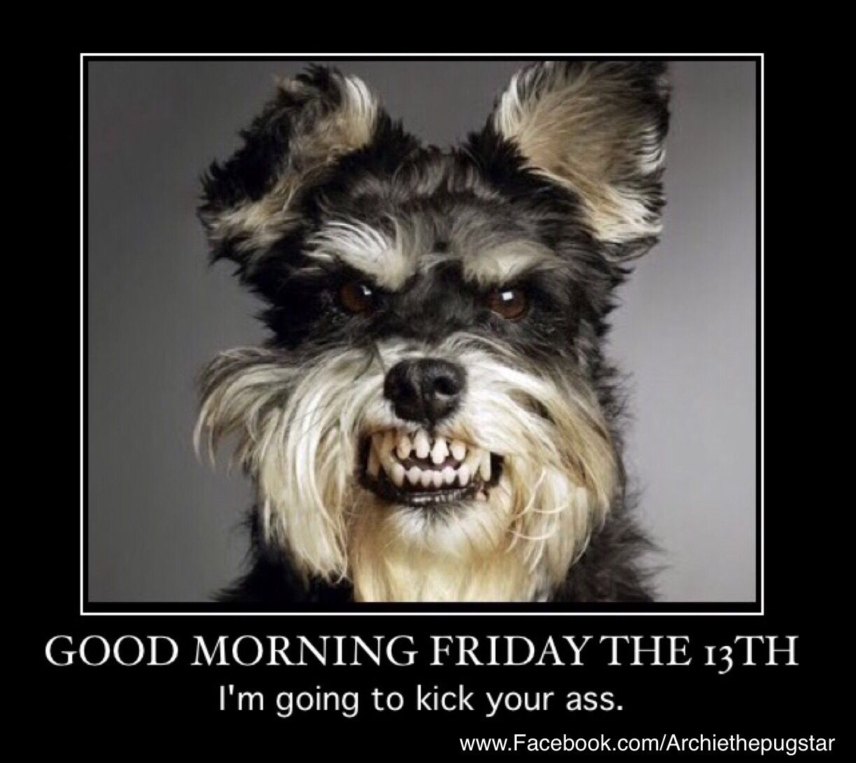 Friday Eve Dog Meme