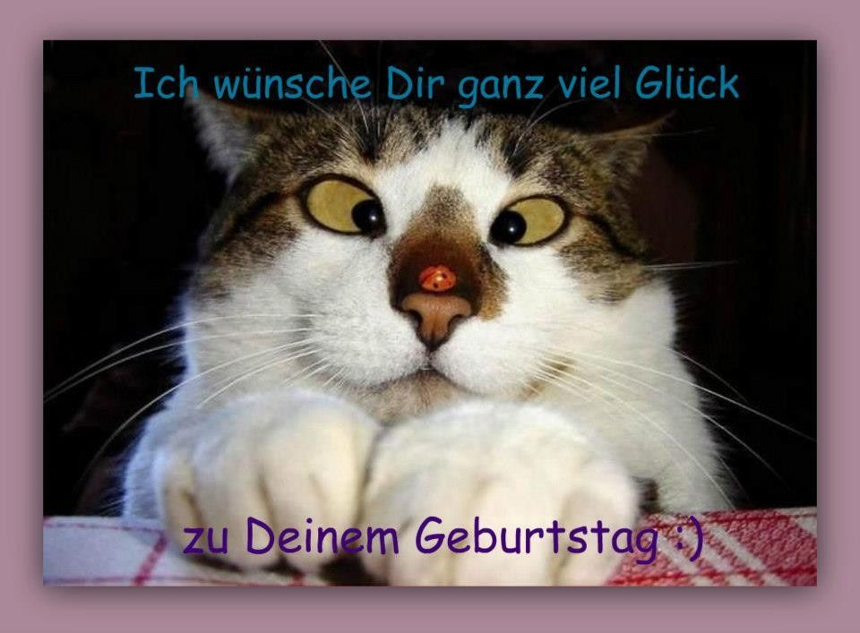 Lustige Geburtstagsbilder Für Fb New Witzige