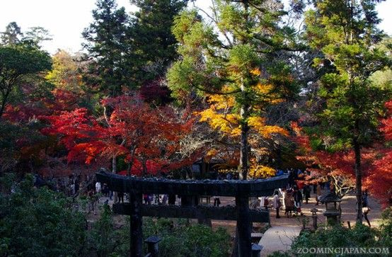 Miyajima (Hiroshima Prefecture) in autumn.