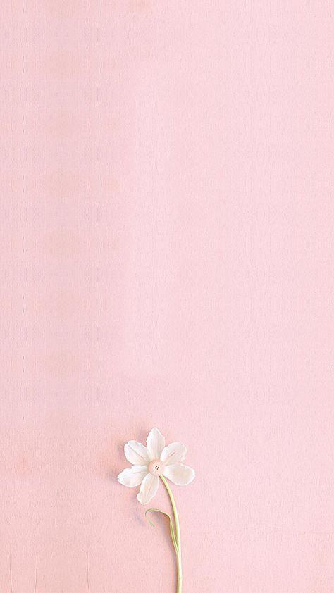 Pink Fresh H5 Background Art