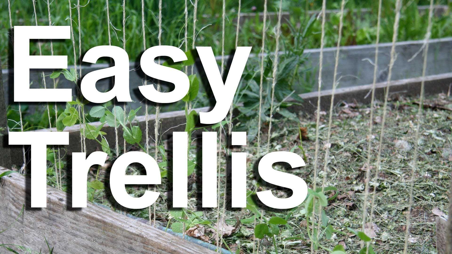 Nice Climbing Vine Trellis Ideas Part - 11: Tv: Build A Trellis For Your Vegetables, Vines Garden Or Climbing Plants Is  Easy. Watch This DIY Video To Make A Garden Trellis. Plans For.