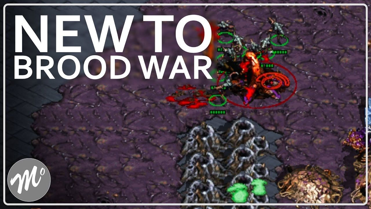 Zerg rush - Lets Learn For Starcraft Remastered Learning The Zerg Rush Ways Zerg Gameplay