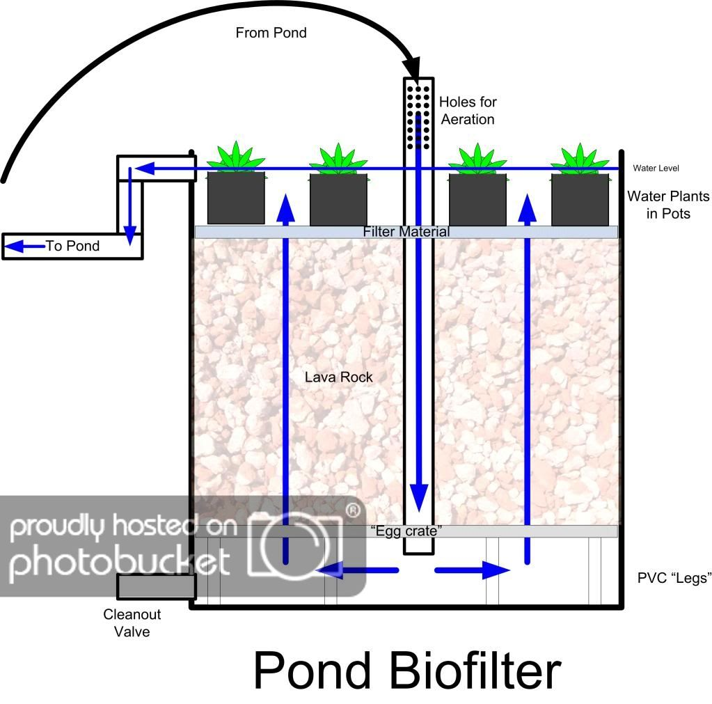 My Pond Biofilter Homestead Forum At