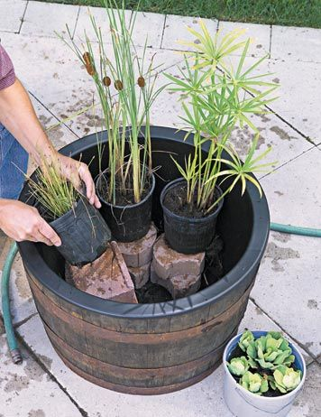 Outdoor Water Garden Do it yourself is part of Small water gardens - Usually when we think about outdoor water gardens we imagine those gardens that occupy a quite large area in a backyard and of course can't be moved  Although there is a way to make a portable wate…