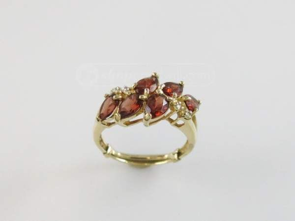 shopgoodwill.com: 10K Gold Ring With Garnets