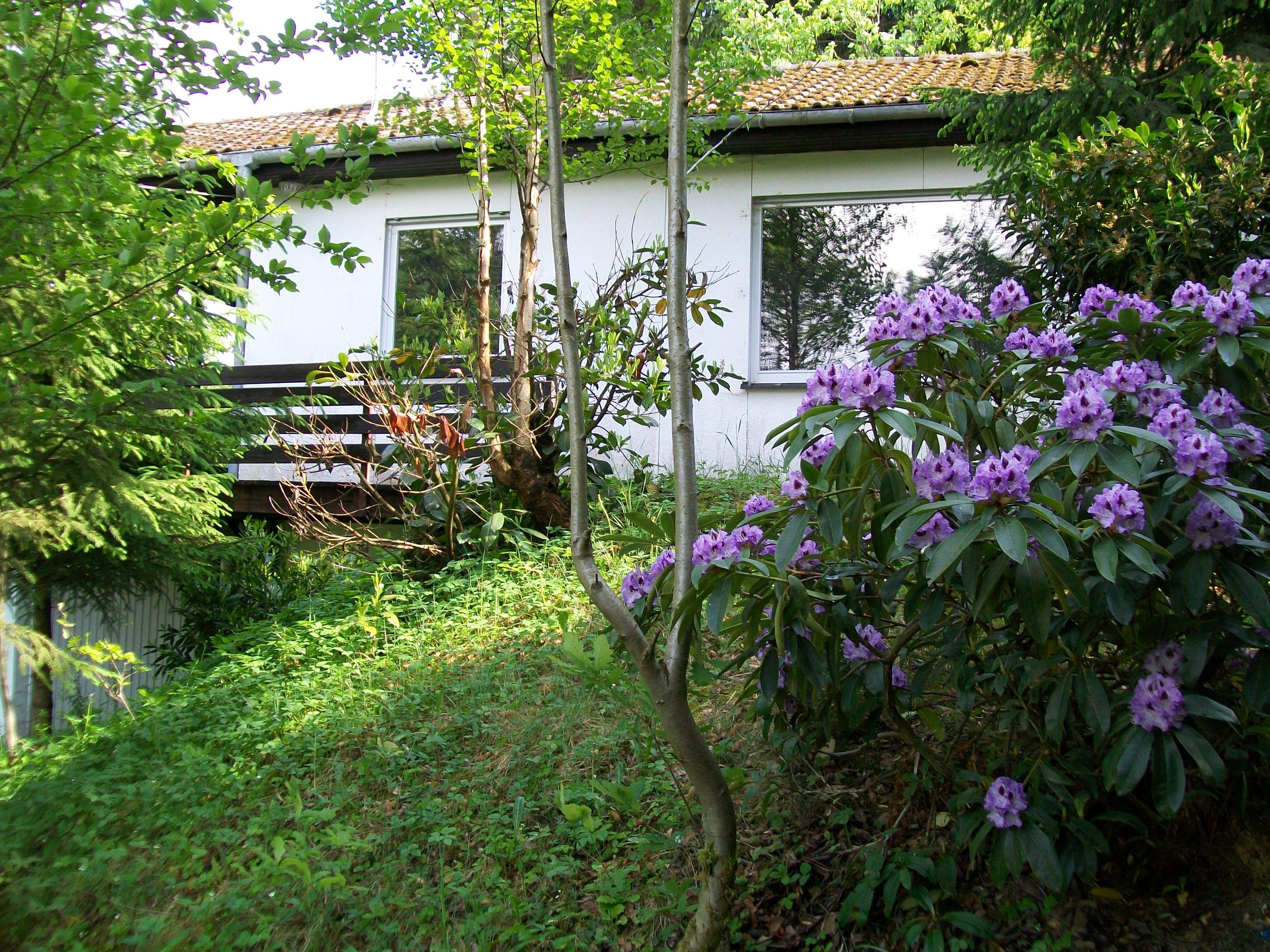 Unser Waldhaus EULENLAND