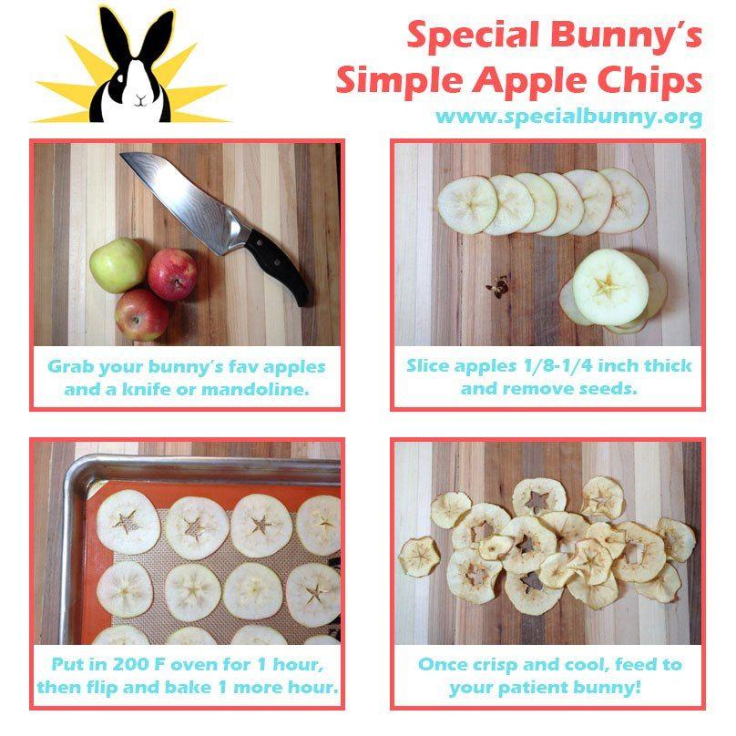 apple treats for bunny Homemade rabbit treats, Pet
