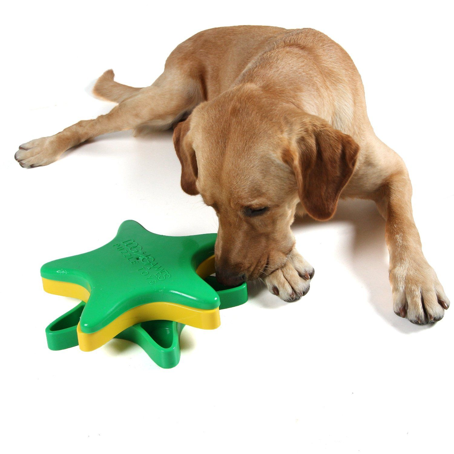 What Are The Best Puzzle Toys For Dogs Who Get Bored Easily