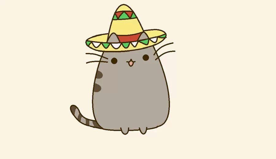 Taco Kitty Pusheen Pusheen Cat Pusheen Cute Pusheen
