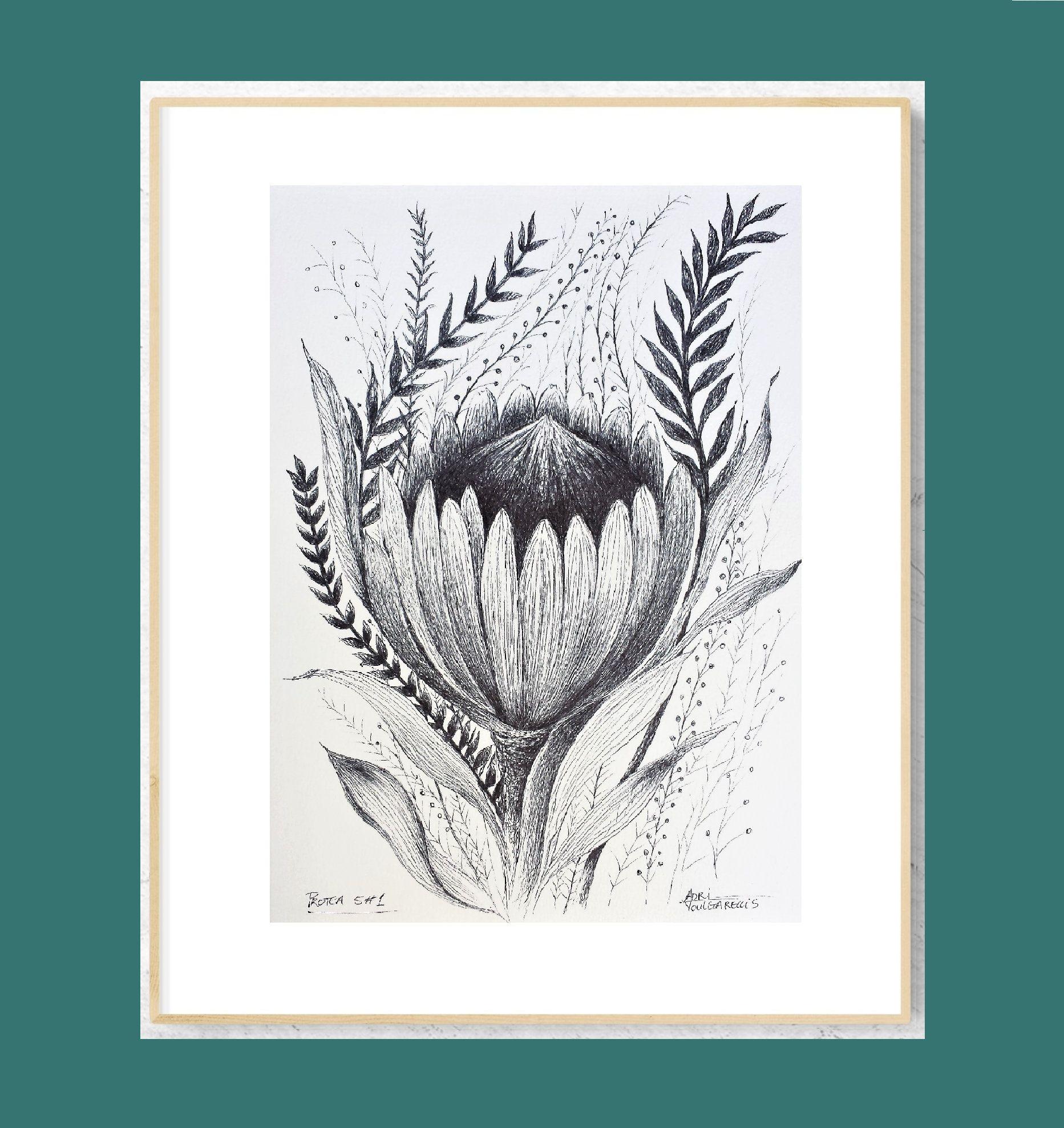 Original Art Protea 5 Pen Drawing On Size A4 Paper Free Std