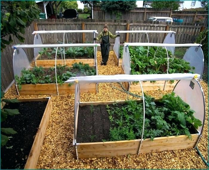 Planter Boxes For Vegetable Garden Home Vegetable Garden Design