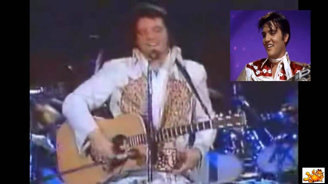 Captain Cook-Elvis Evergreens