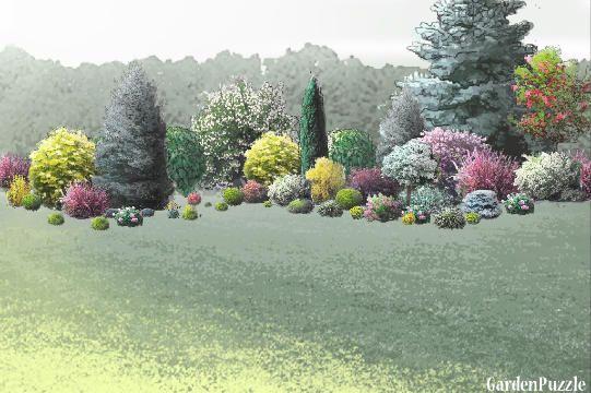 Garden designshrub bed Spring shrubs Pinterest Shrub
