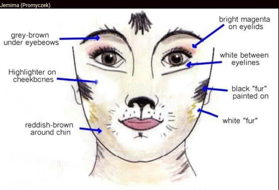 Cats The Musical Jemima Makeup