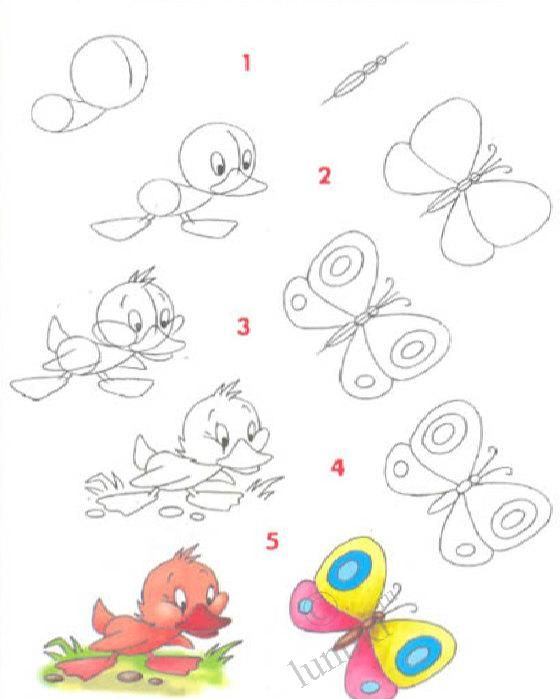 pictures for children to draw a little duck and a butterfly step by step - Drawing For Little Kids