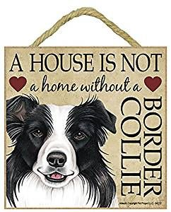 Border Collie Plaque 8 95 At Www Twowoofs Co Uk Border Collie