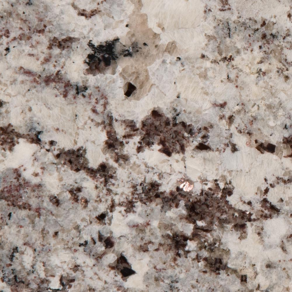 Stonemark Granite 3 In X 3 In Granite Countertop Sample In