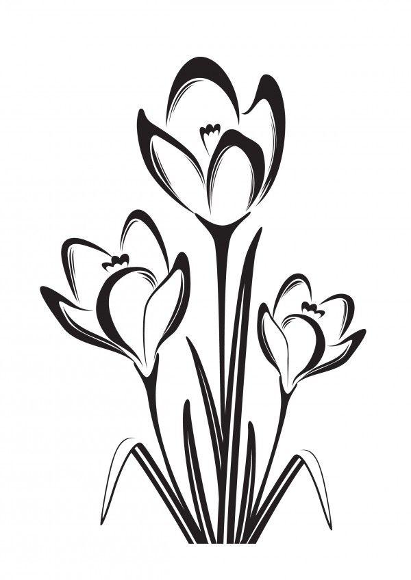 Darmowy Szablon Malarski Krokus Flower Drawing Fabric Painting Folk Embroidery