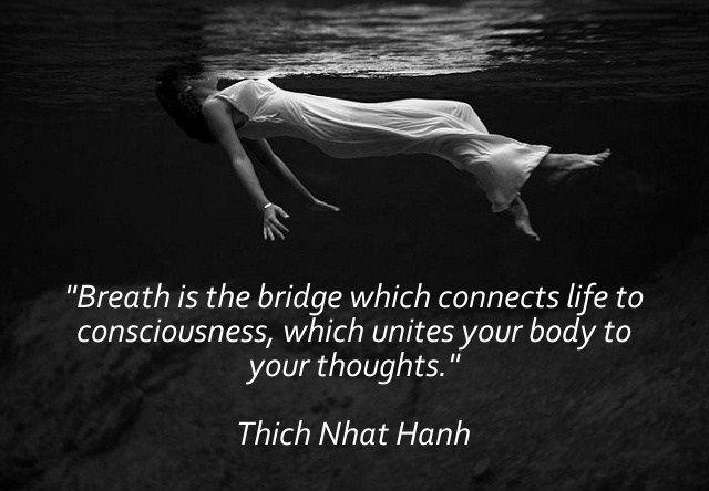Breath Bridge Consciousness