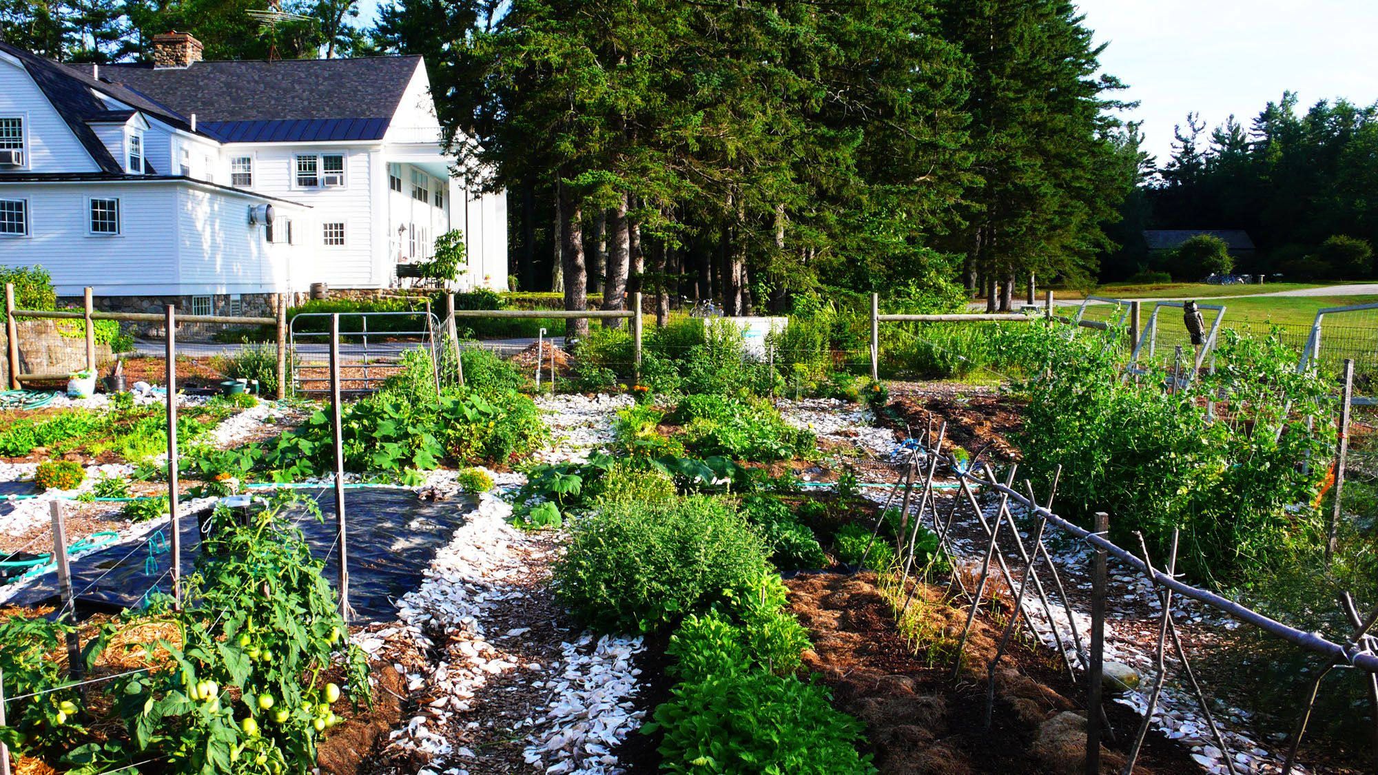 the new kitchen garden at macdowell colony kitchen garden garden gates garden tours on kitchen garden id=78358