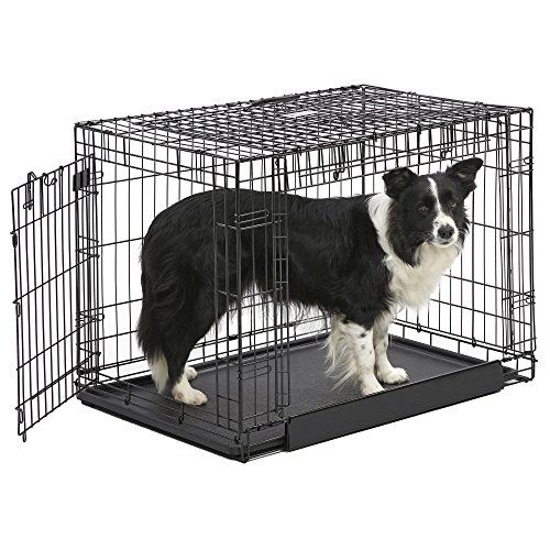 MidWest Homes for Pets Ovation Double Door Dog Crate, 36-Inch -- Want to know more, click on the image.