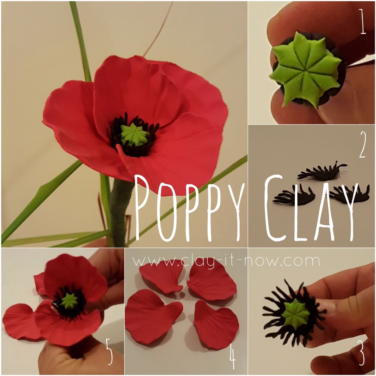 Poppy Flower Tutorial Blumen Aus Papier Mohnblume