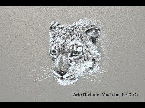 Cómo dibujar un leopardo de las nieves - Narrado - YouTube
