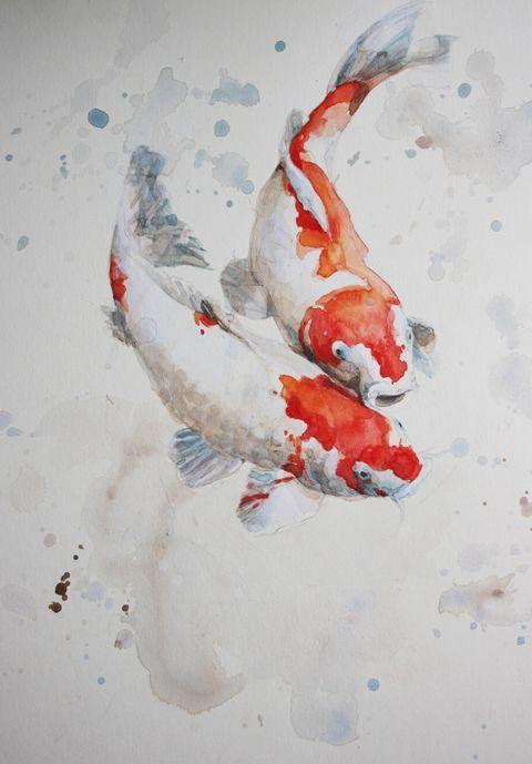 Pinterest Thebabester Aquarell Fisch Aquarell Koi Koi Malerei
