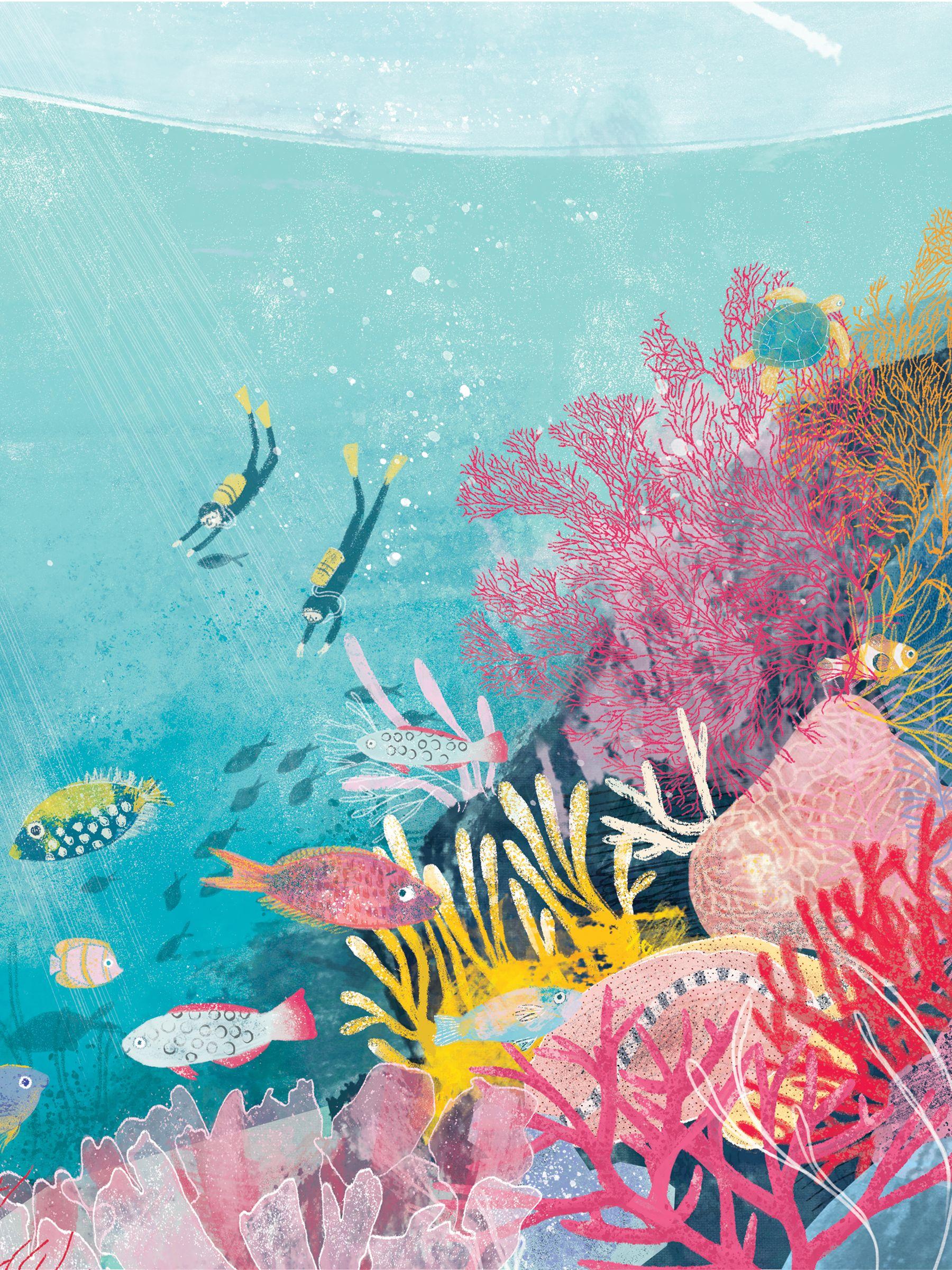 Great Barrier Reef Katie Rewse Sea Illustration Coral Reef Art Ocean Art