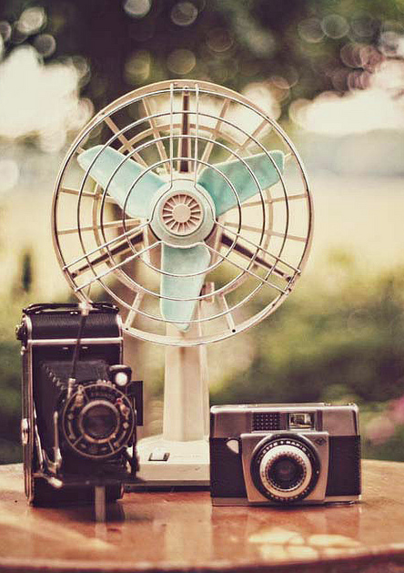 Vintage cameras and fan  | More vintage lusciousness here: http://mylusciouslife.com/photo-galleries/vintage-style-lovely-nods-to-the-past/