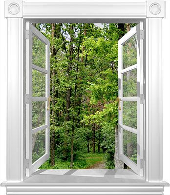 Windowmurals Com Open Window Mural Series Window Mural Fake Window Wall Decor Stickers