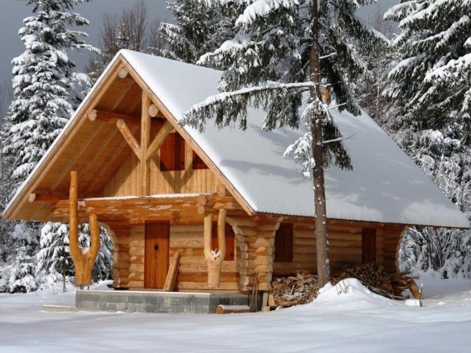 Proiecte de case din lemn rotund Home fashion, Case, Lemn