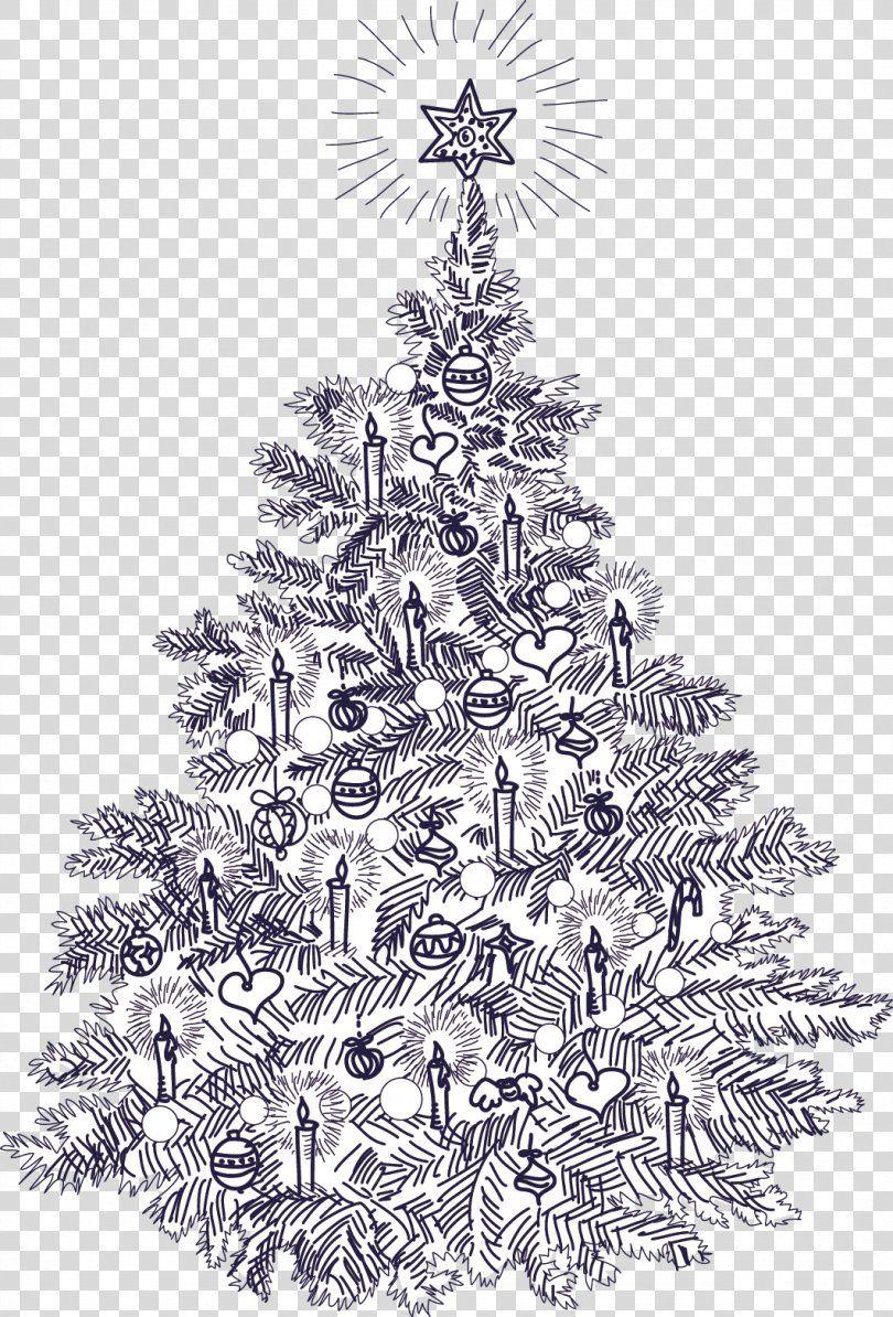 Christmas Tree Clipart Hand Drawn Christmas Doodles Winter Etsy In 2021 Christmas Tree Clipart Christmas Tree Drawing Christmas Doodles