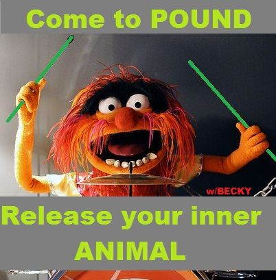 Pound class Rockout Workout fitness funny fun exercise meme animal ...