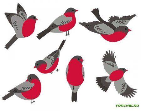 Картинки птицы на ветках (30 фото) • Прикольные картинки и позитив | 354x450