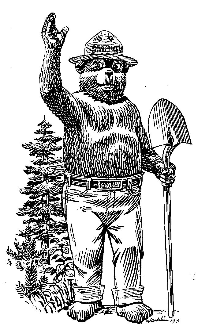Smokey Bear Smokey The Bears Bear Drawing Bear Coloring Pages