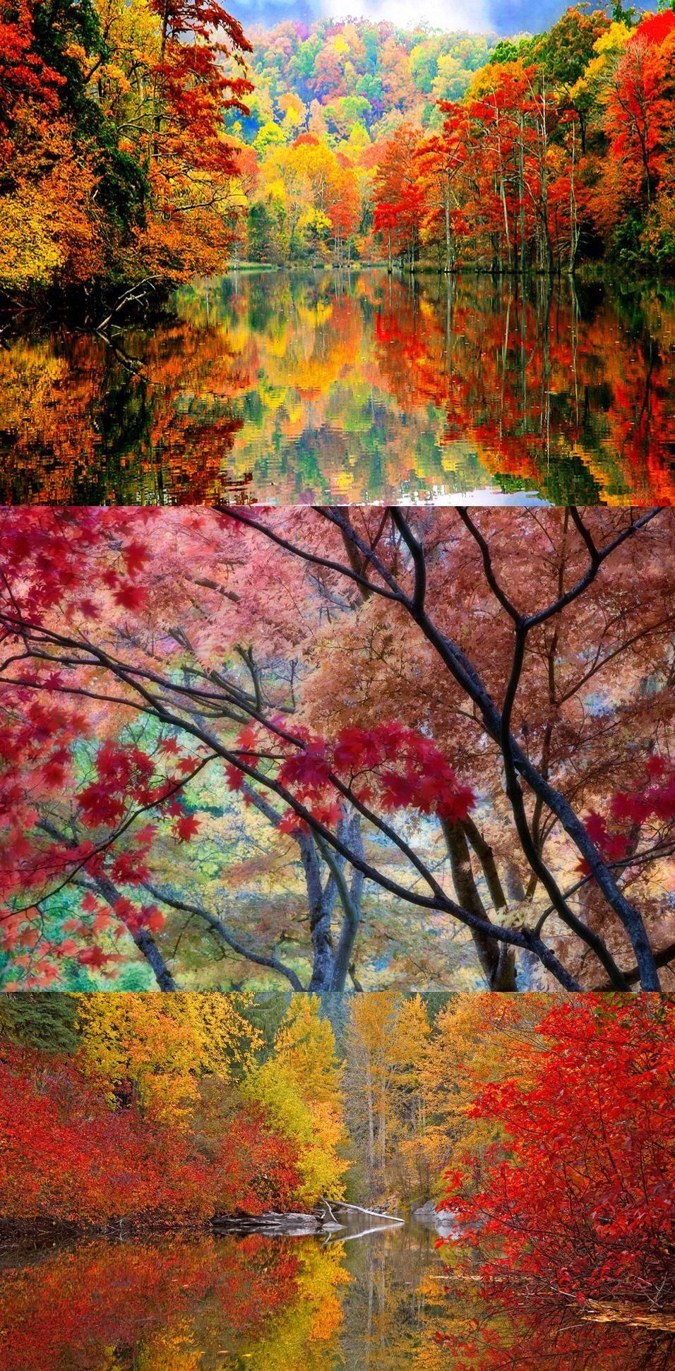 Colours of Autumn, Autumn Colors