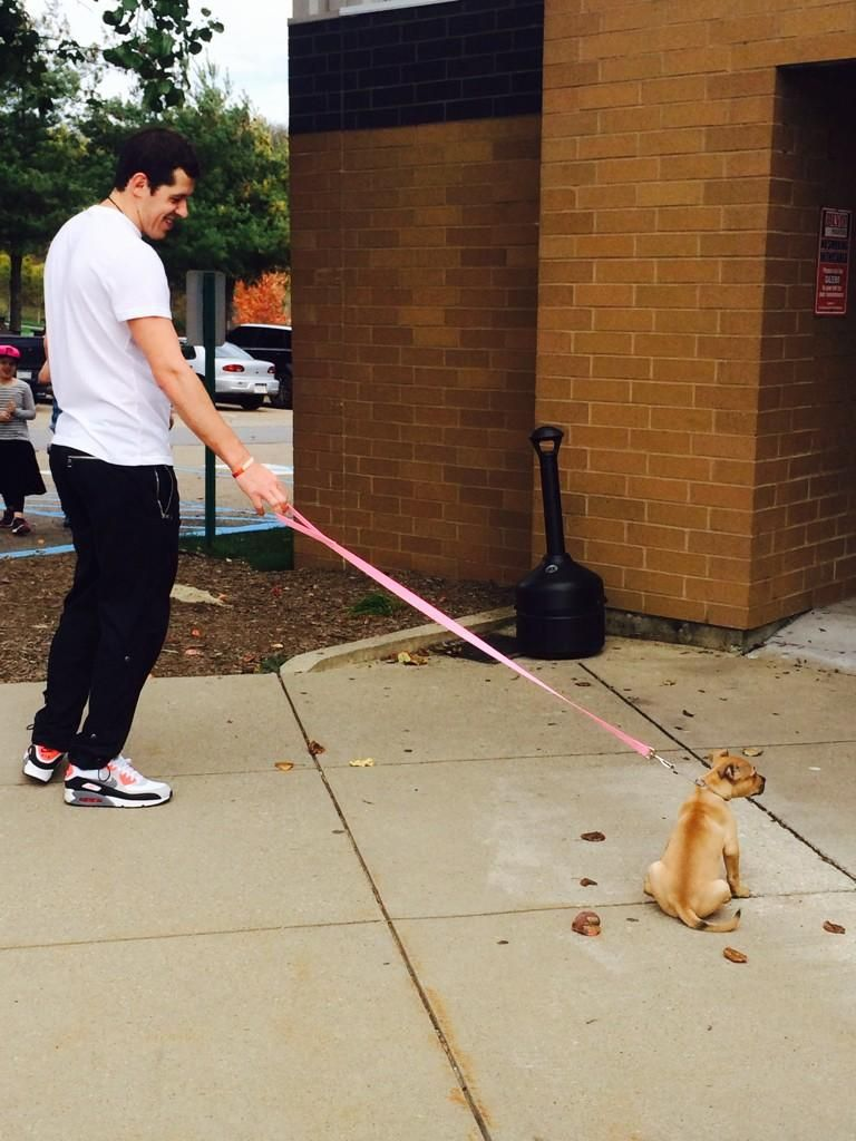 Pittsburgh Penguins Evgeni Malkin and a reluctant puppy