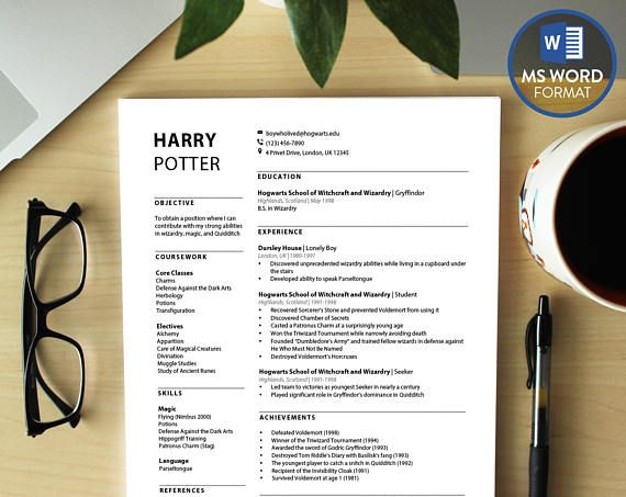Professional Resume Templates Word Modern Cv Template