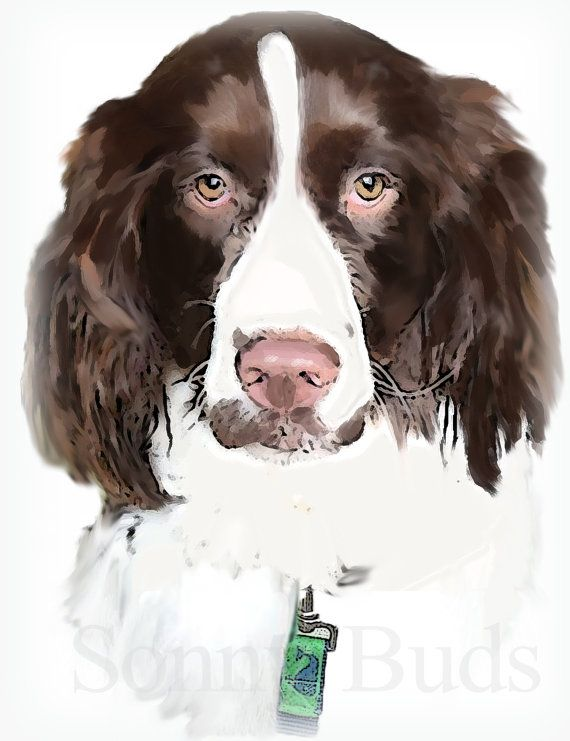 Sold Painting Custom Springer Spaniel Digital By Sonnybuds On Etsy 55 00 Dog Art Dog Portraits Animal Paintings