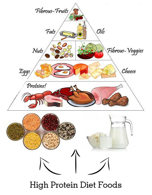 food for high protein diet