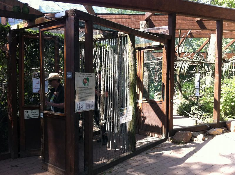 Foyer Entry Zoo : Aviary entrance with double door system aviaries