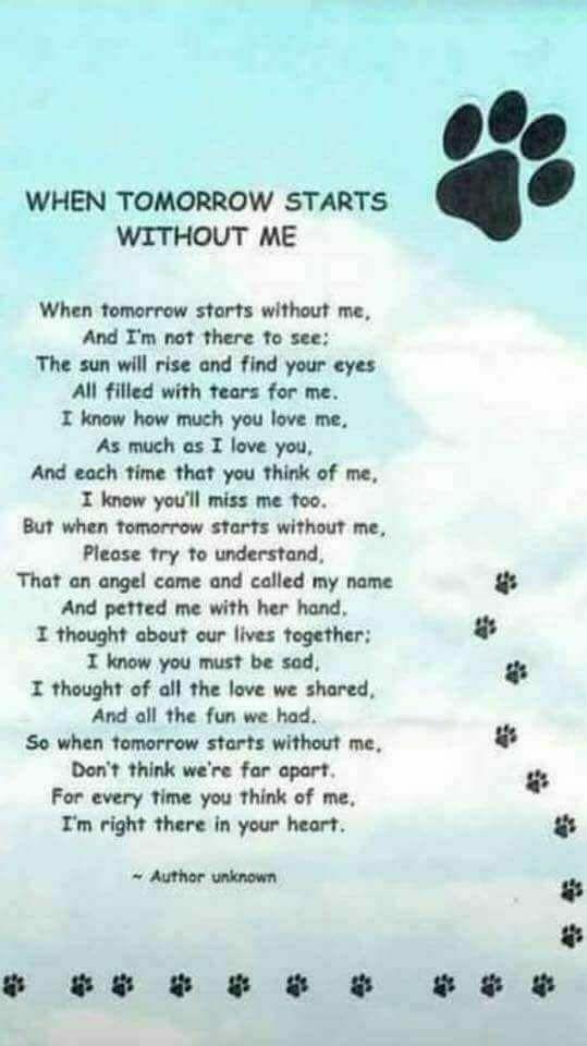 Dog Death Poems 7