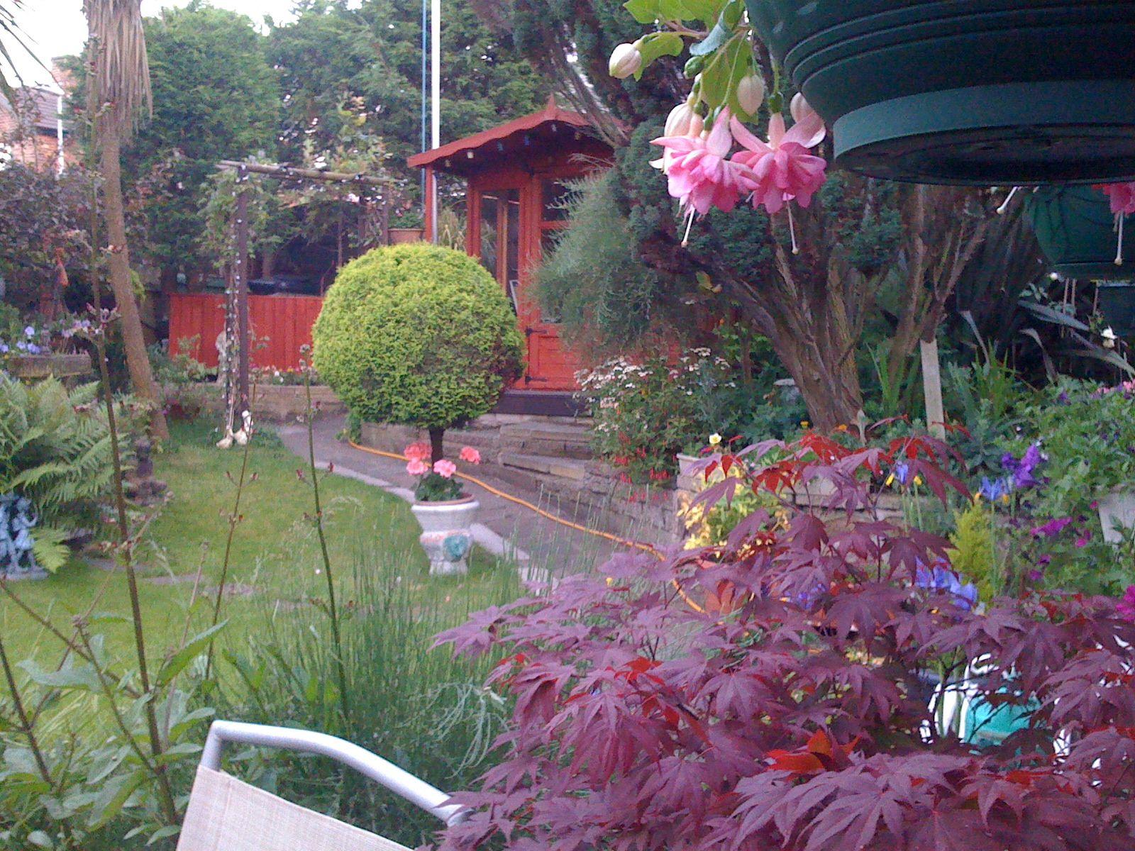 My Aunt's beautiful garden in England