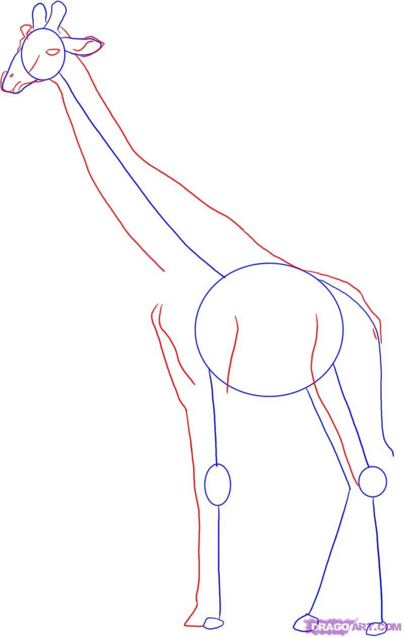 Uncategorized How Do You Draw A Giraffe giraffe sketch simple side view google search kids knob how to draw a step by safari animals free