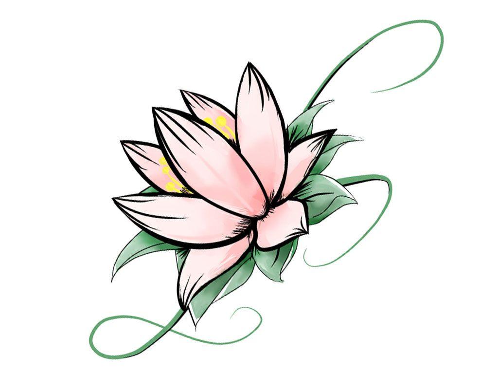 Image Result For Simple Lotus Drawing Drawings Pinterest Lotus