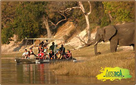 The breathtaking #Serengeti in #Tanzania #auzica