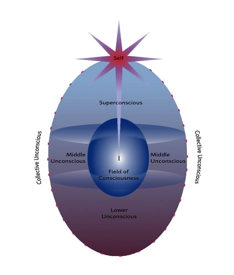 The Egg Diagram Photo Credit Institute Of Psychosynthesis London