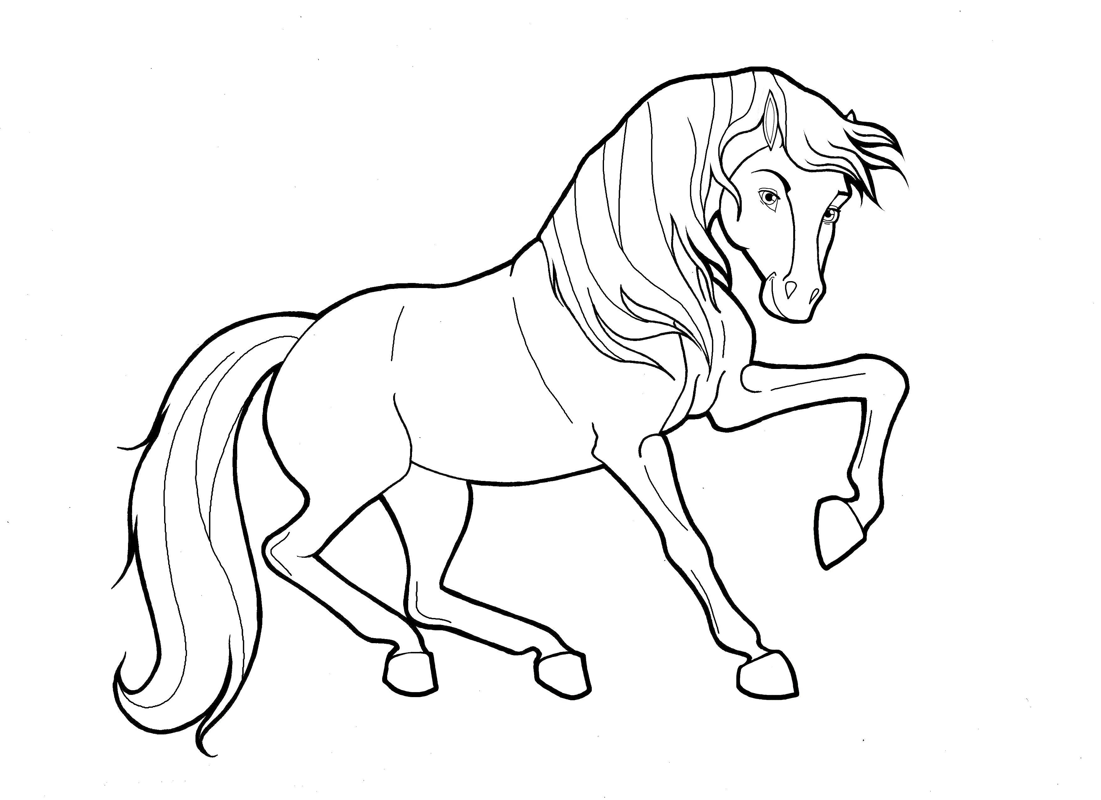 Pin By Eva Gubik On Burning Horse Coloring Pages Animal Coloring Pages Horse Coloring [ 2550 x 3509 Pixel ]