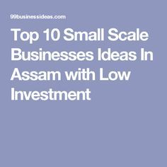 Top 10 Small Scale Businesses Ideas In Assam with Low